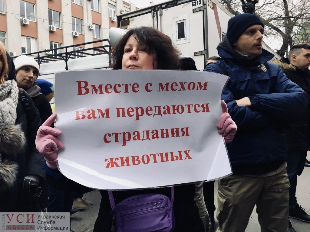Украинские зоозащитники проведут акции протеста у магазинов меха в «Черную пятницу» «фото»