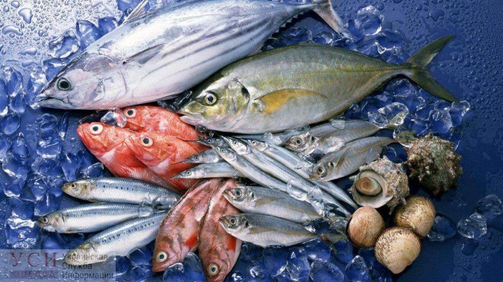 В Черном море почти вдвое увеличился вылов рыбы – Госрыбагентство говорит о рекордных показателях «фото»