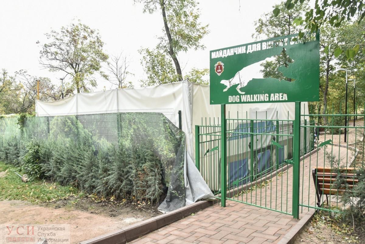 В Одессе расследуют хищение средств при строительстве площадки для выгула собак: фирма связана с женой депутата (документ) «фото»