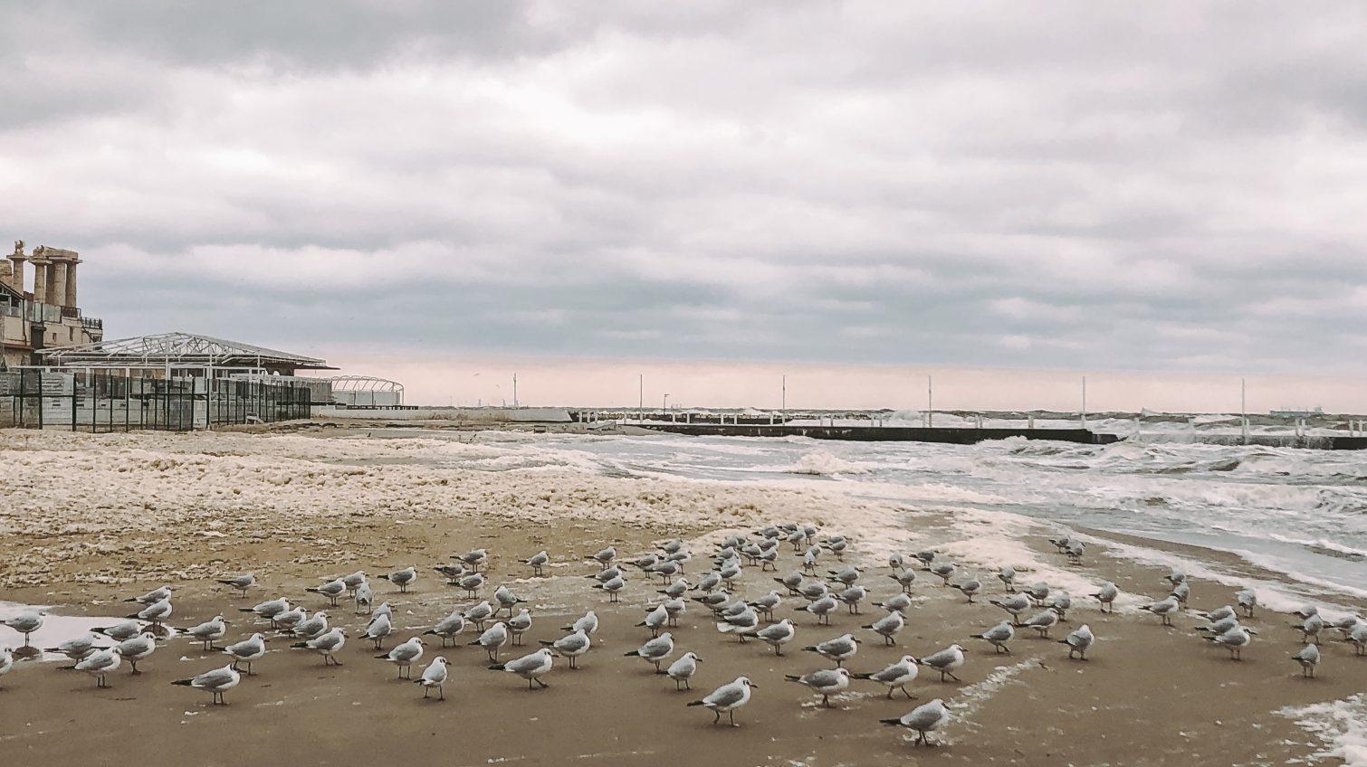 Осенний шторм и разрушительная стихия: ветер повалил летнюю площадку в Аркадии (фоторепортаж) «фото»