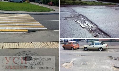 Беляевские активисты посадят цветы в ямах на трассе «фото»