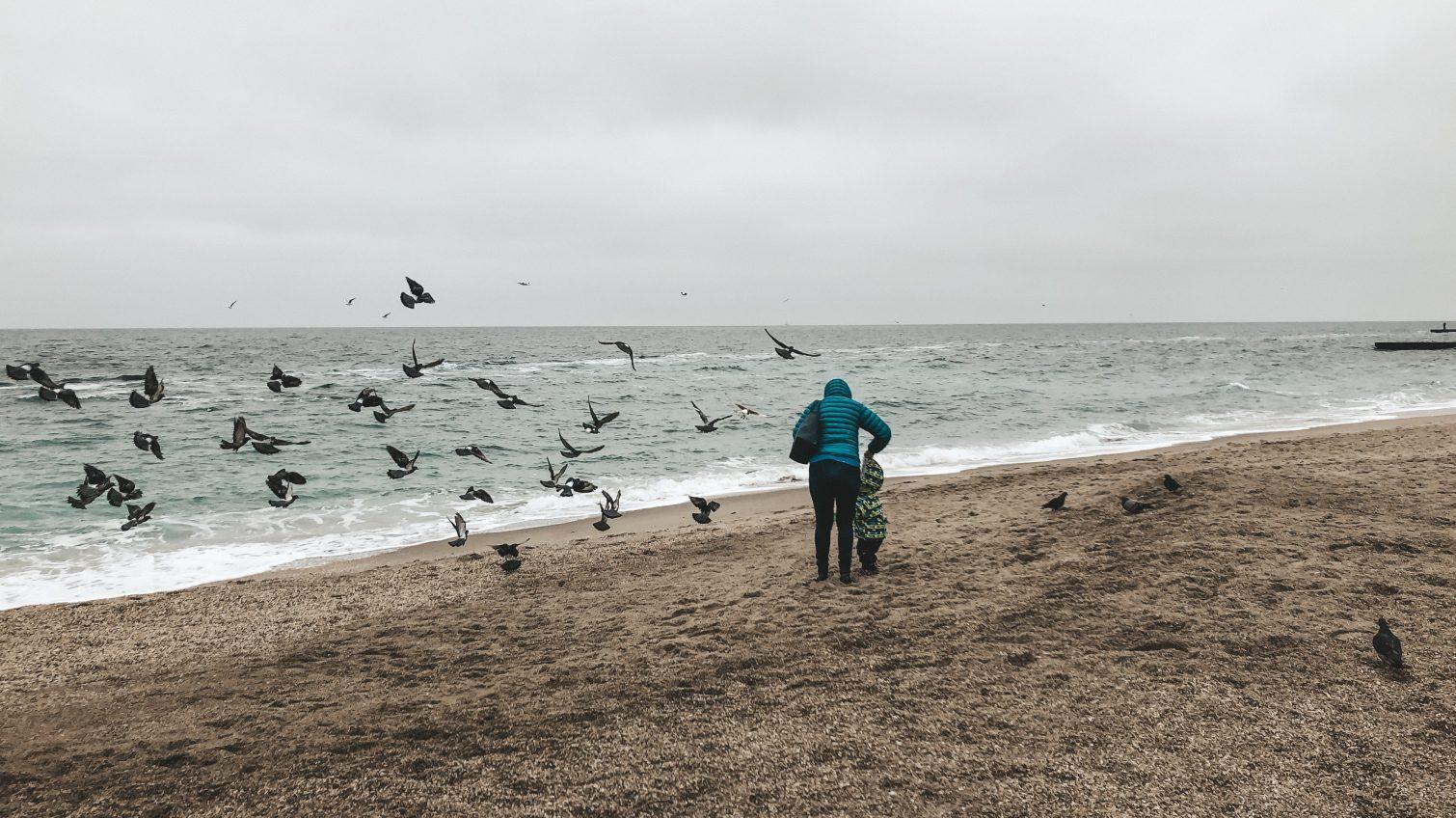 Ветреный и облачный вторник обещают Одессе и области синоптики «фото»
