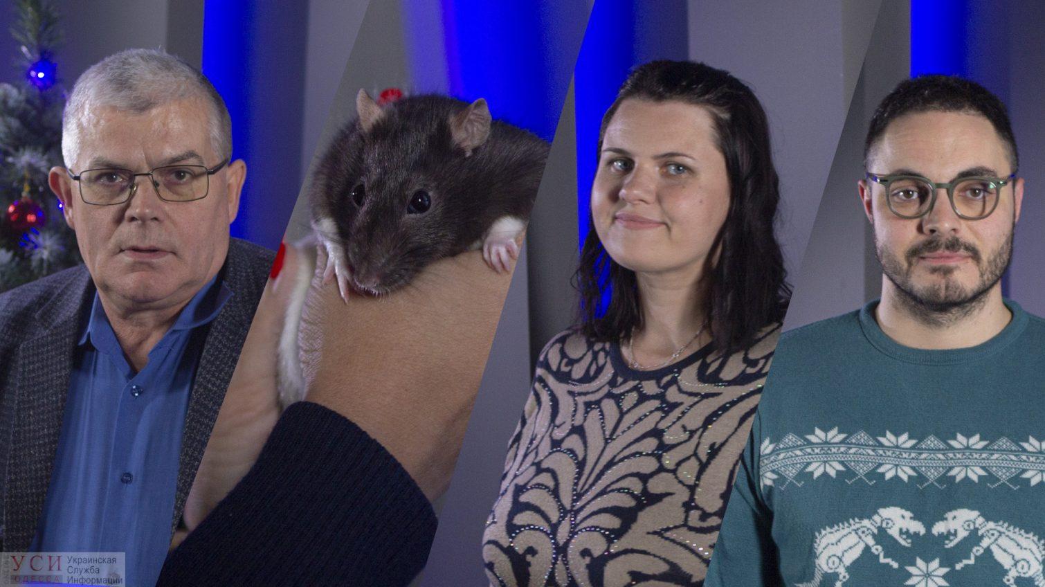Новогодний эфир: каким будет следующий год? — узнаем у директора Одесского зоопарка и гадаем с крысой «фото»
