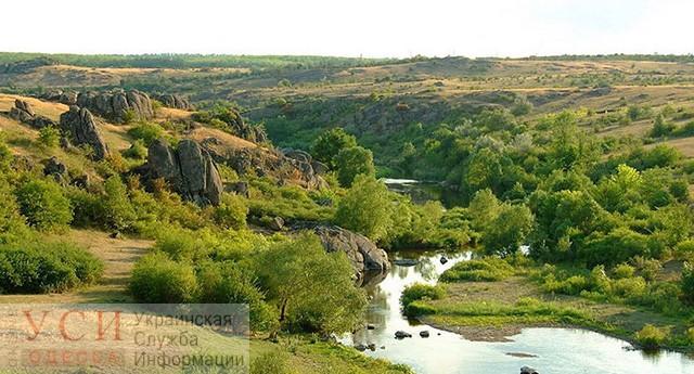В Одесской области разрабатывают экологическую сеть, которая будет включать охраняемые леса, земли и водные ресурсы «фото»