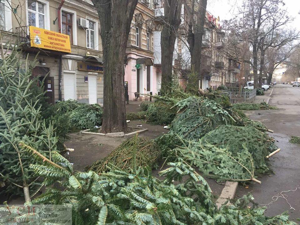 Продавцы елок побросали горы нереализованного товара: коммунальщики убирают завалы хвои (фото) «фото»