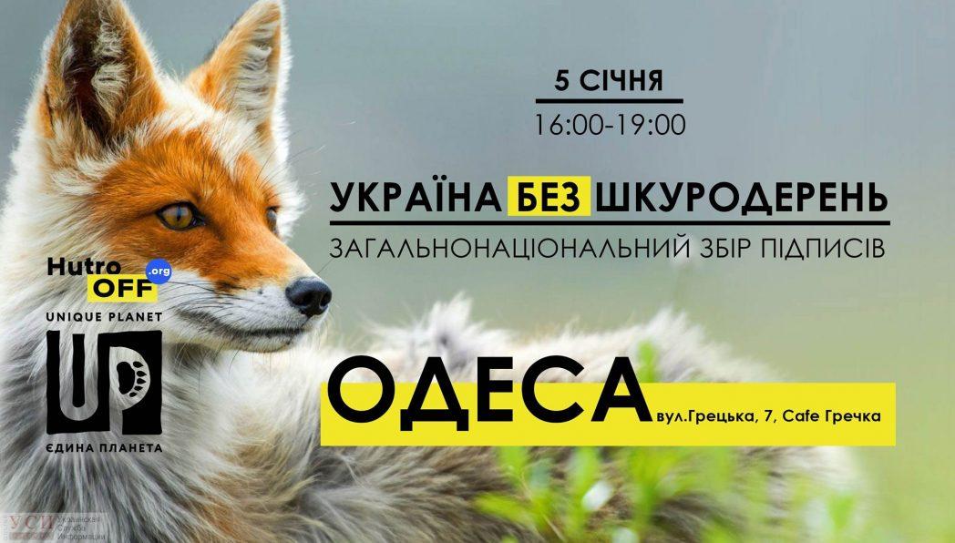 В Одессе будут собирать подписи против меховых ферм «фото»