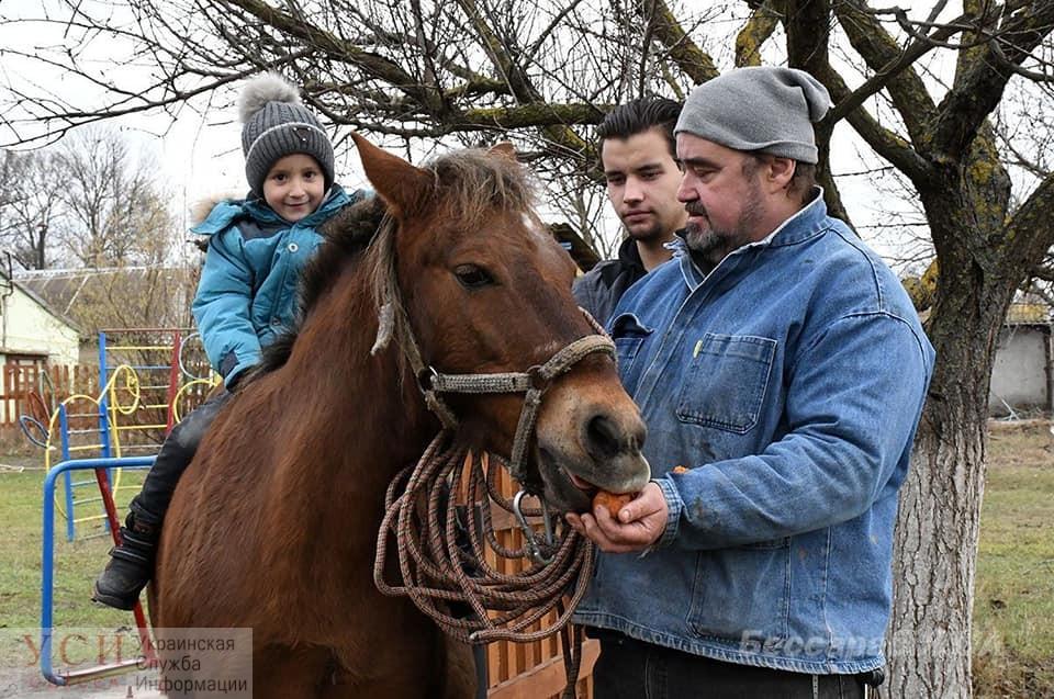Пони будет лечить детей из реабилитационного центра в Измаильском районе «фото»