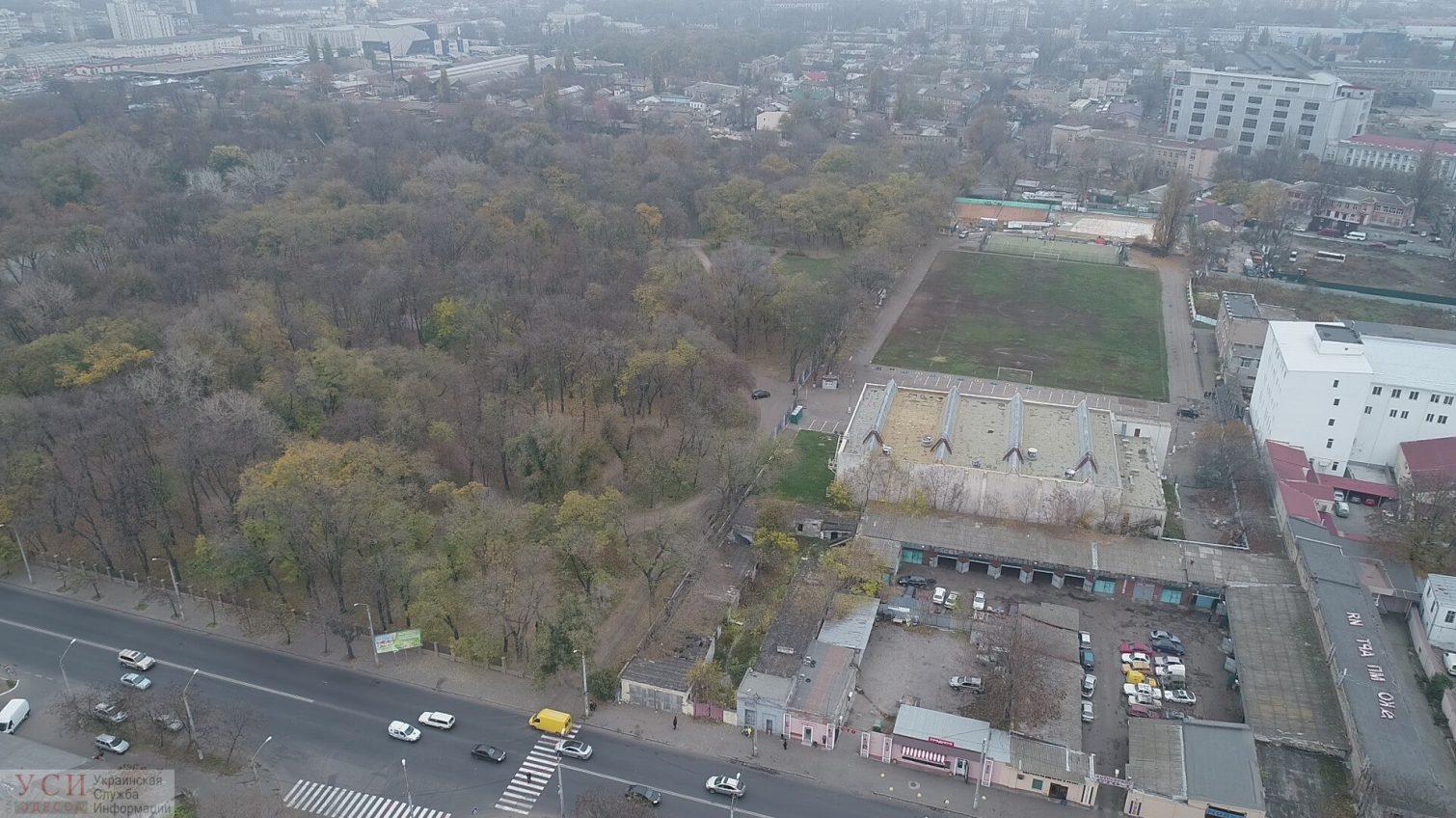 Преображенский парк в Одессе зачищают от деревьев под парковку для посетителей спорткомплекса (фото, видео) «фото»