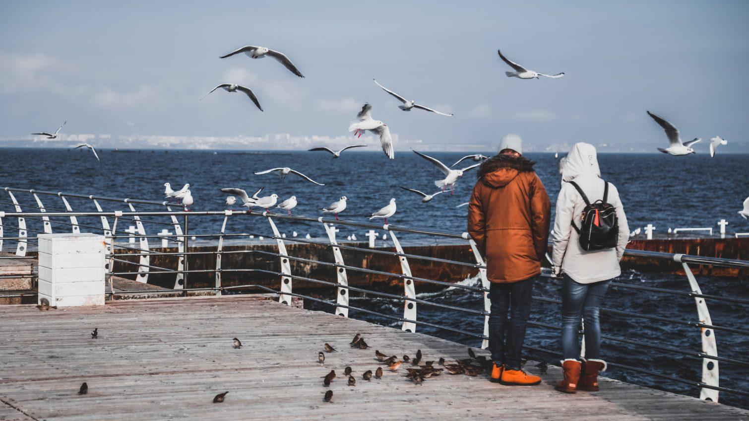 Солнце, чайки и море: одесситы наслаждаются прогулками по побережью (фоторепортаж) «фото»