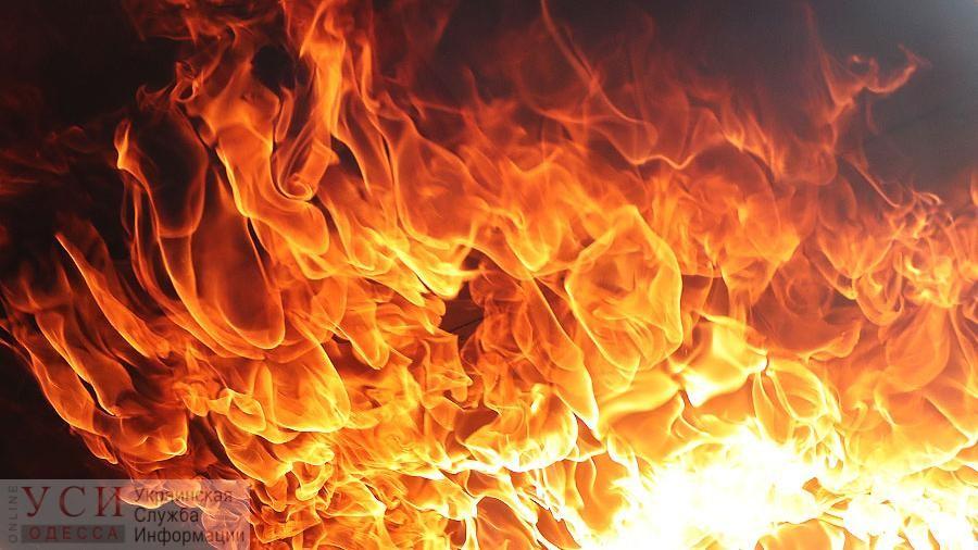 Мать и сын погибли во время пожара в частном доме в Одесской области «фото»