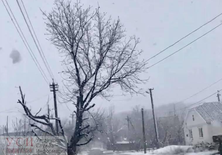 На севере Одесской области выпал снег (фотофакт) «фото»