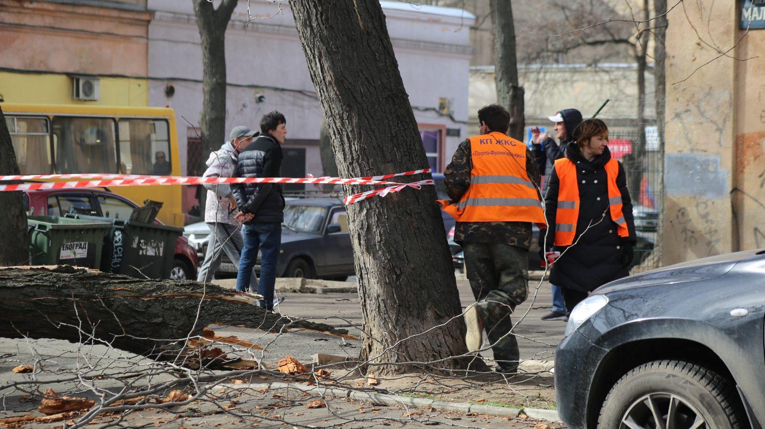 В Одессе подвели итоги удара стихии «фото»