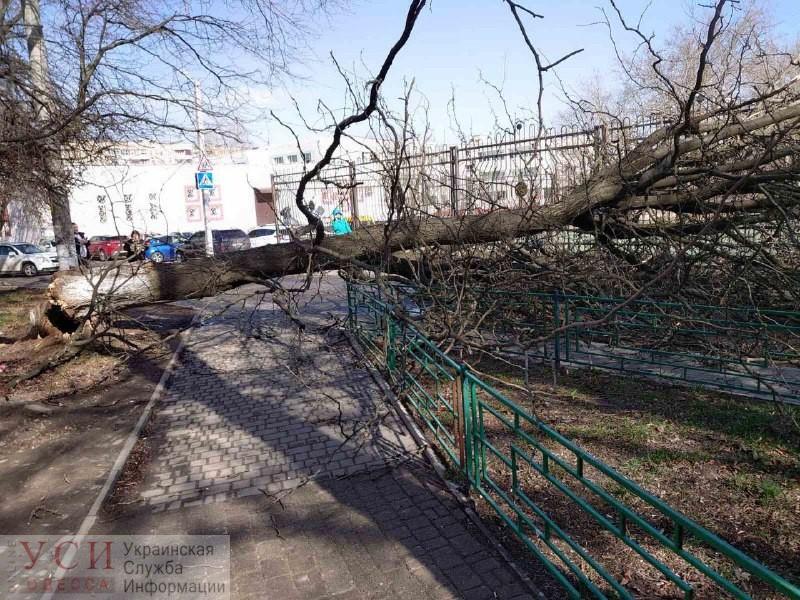 Древопад в Одессе: массовое падение билбордов, проткнувшие автомобиль штыри и застывшие на рельсах трамваи (обновляется) «фото»