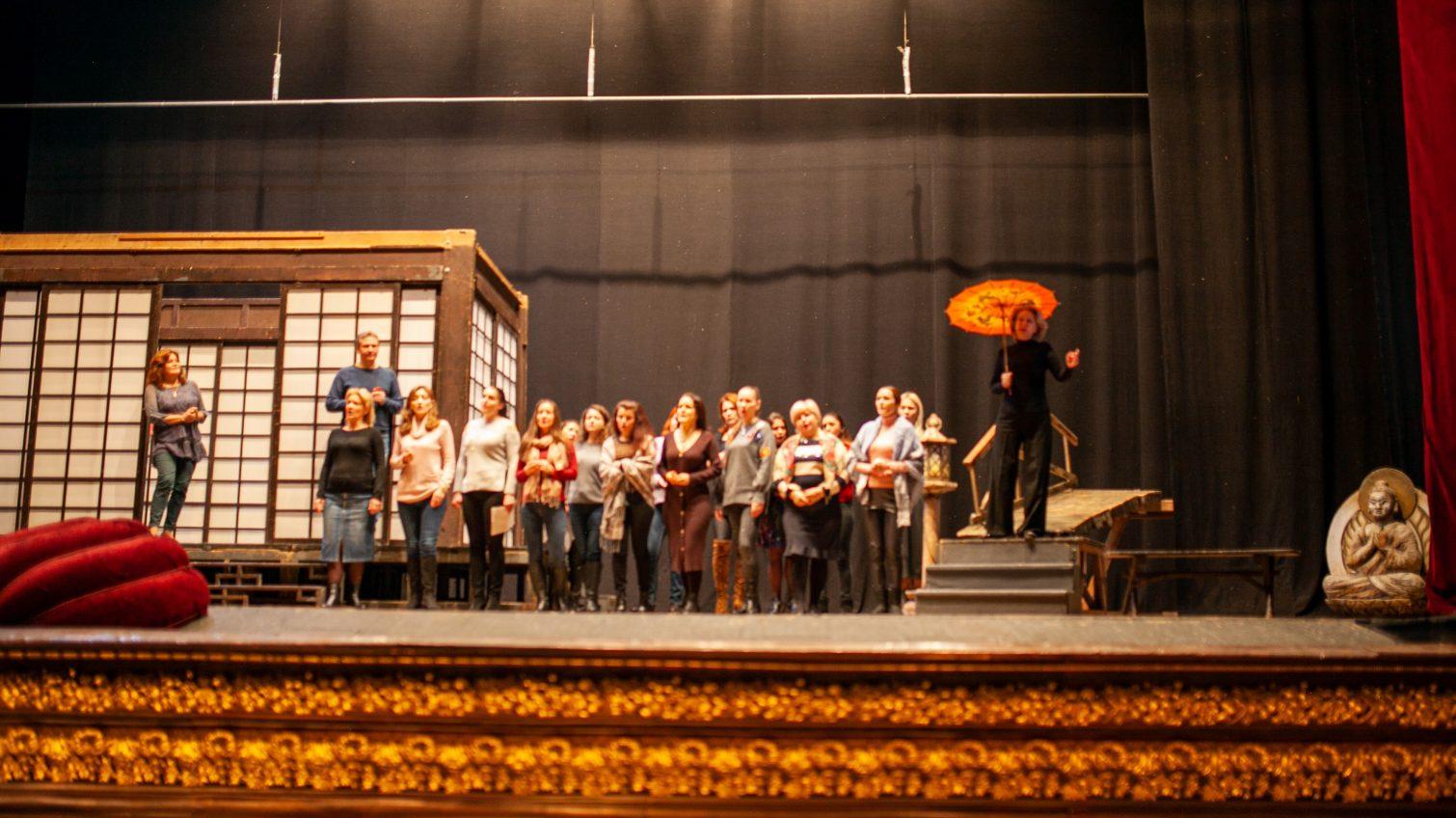 В Одесском оперном театре приобретут специальный танцевальный линолеум за 330 тысяч «фото»