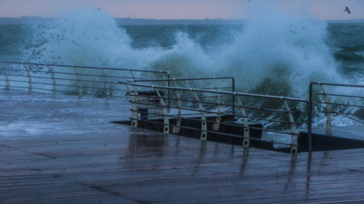 На Одессу снова надвигается ветреный циклон: водителей просят не парковать машины под деревьями «фото»