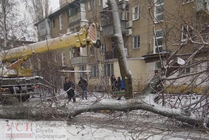 Итоги недели: первый снег, карантин и снос последнего Жукова в Одессе «фото»