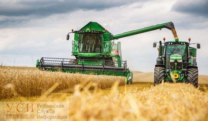 За 2019 год Украина собрала рекордное количество зерна «фото»