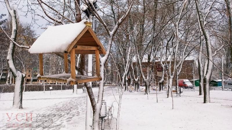 Легкий мороз и отсутствие осадков ожидают одесситов в пятницу «фото»