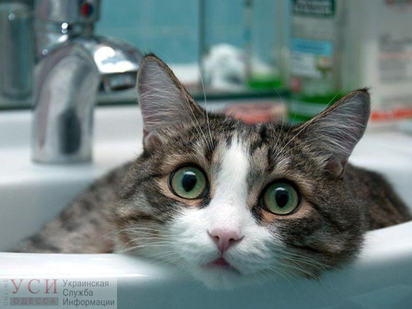 На Таирова в четверг отключат воду на весь день «фото»