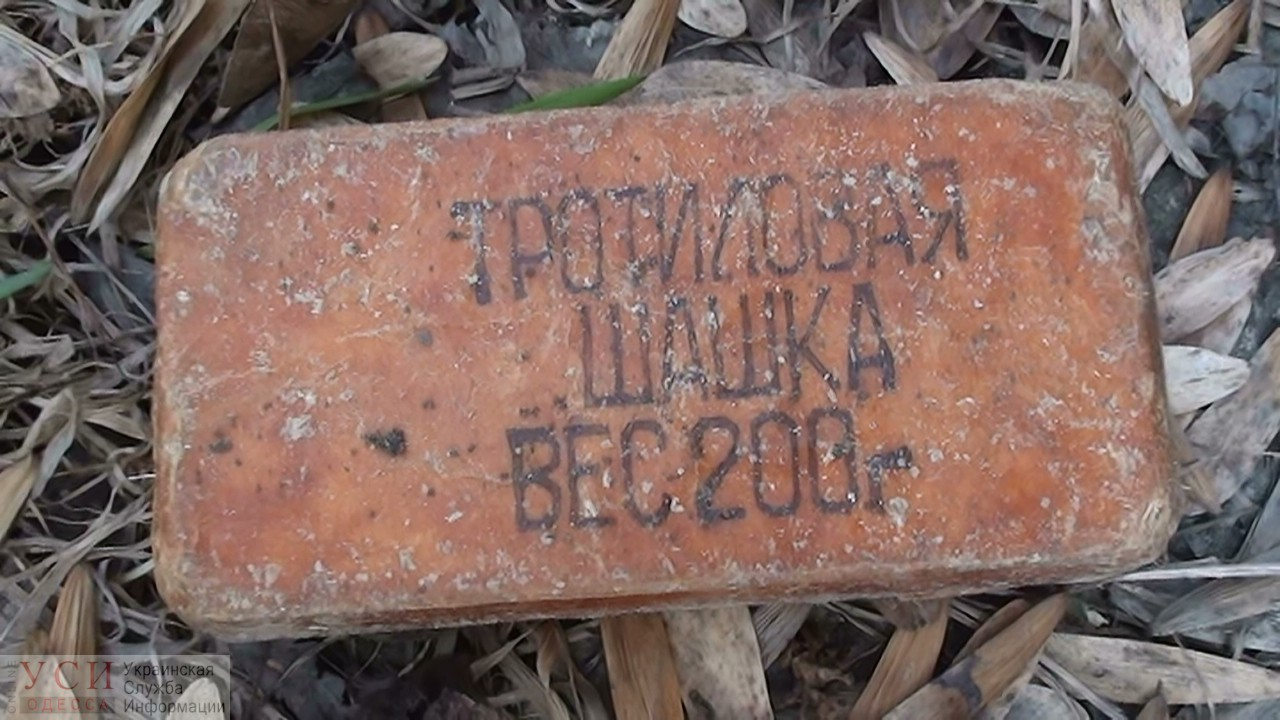 СБУ нашла у жителя Одесской области взрывчатку, гранаты и артснаряды «фото»