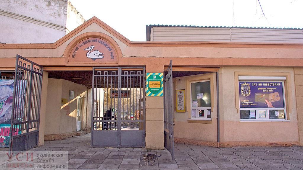 В Одесской мэрии не отказываются от идеи нового кредита для зоопарка «фото»