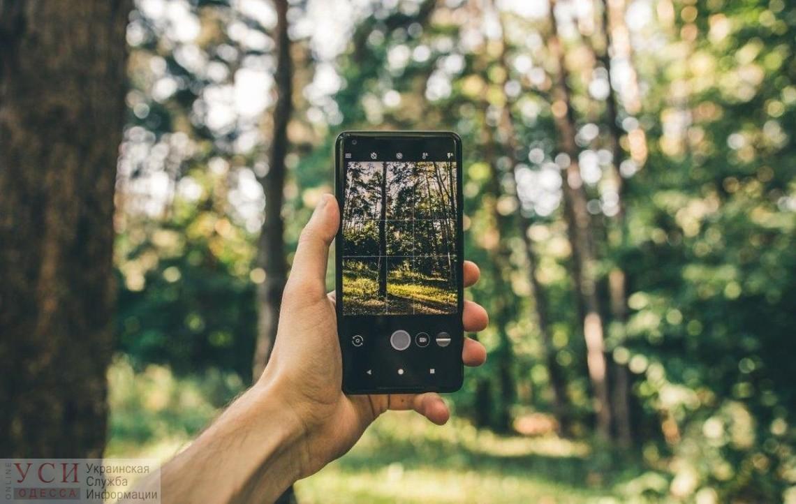«Лес в смартфоне»: в электронный реестр добавили Одессу и еще 13 областей «фото»
