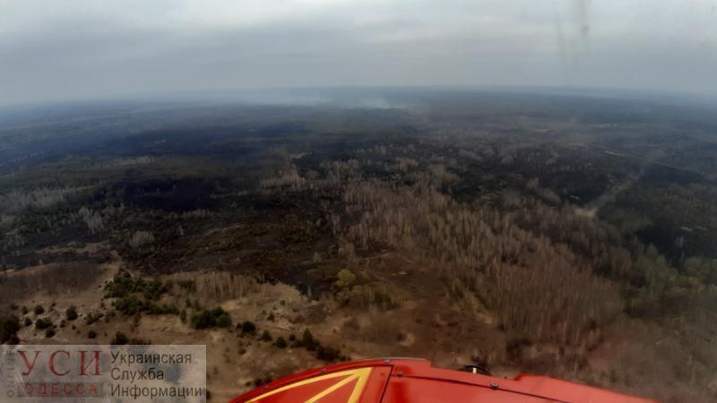 «Открытого огня нет»: пожарные продолжают тушение тлеющего леса возле Чернобыля «фото»