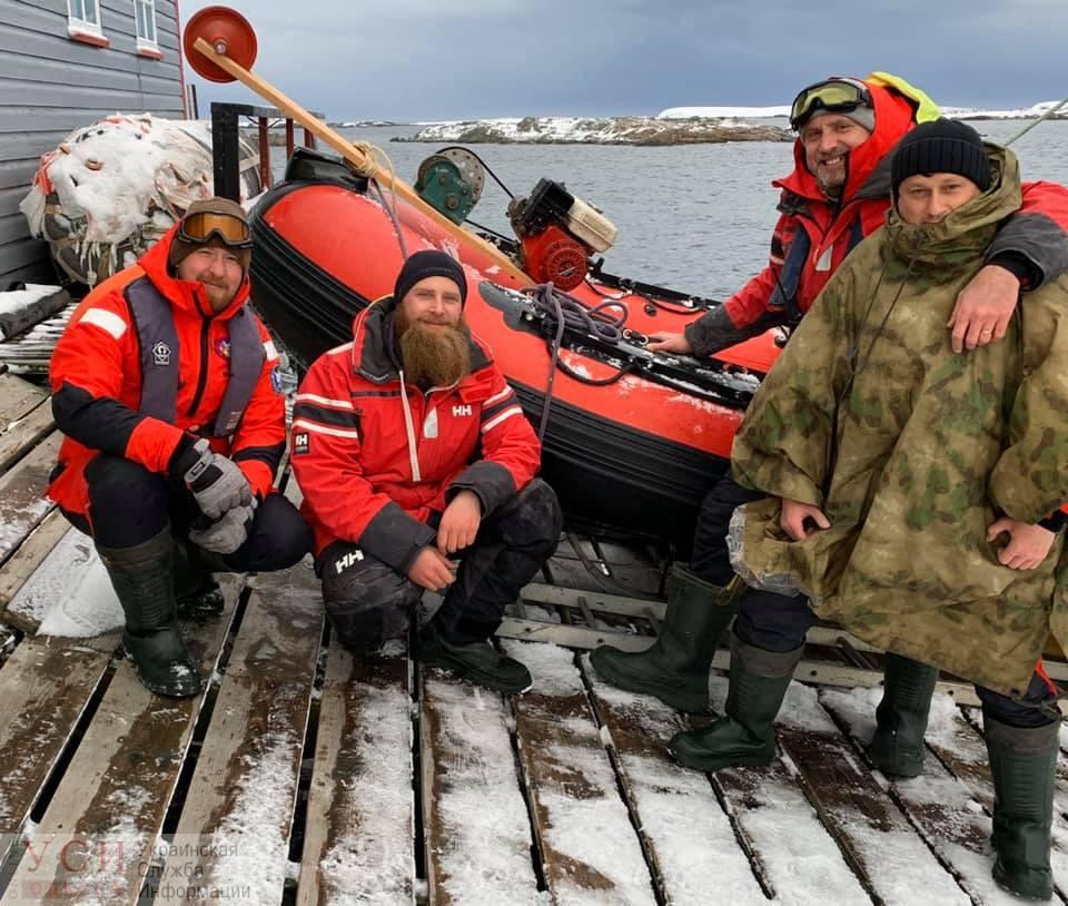 Украинские ученые нашли новые виды морских животных в Антарктиде (фото) «фото»