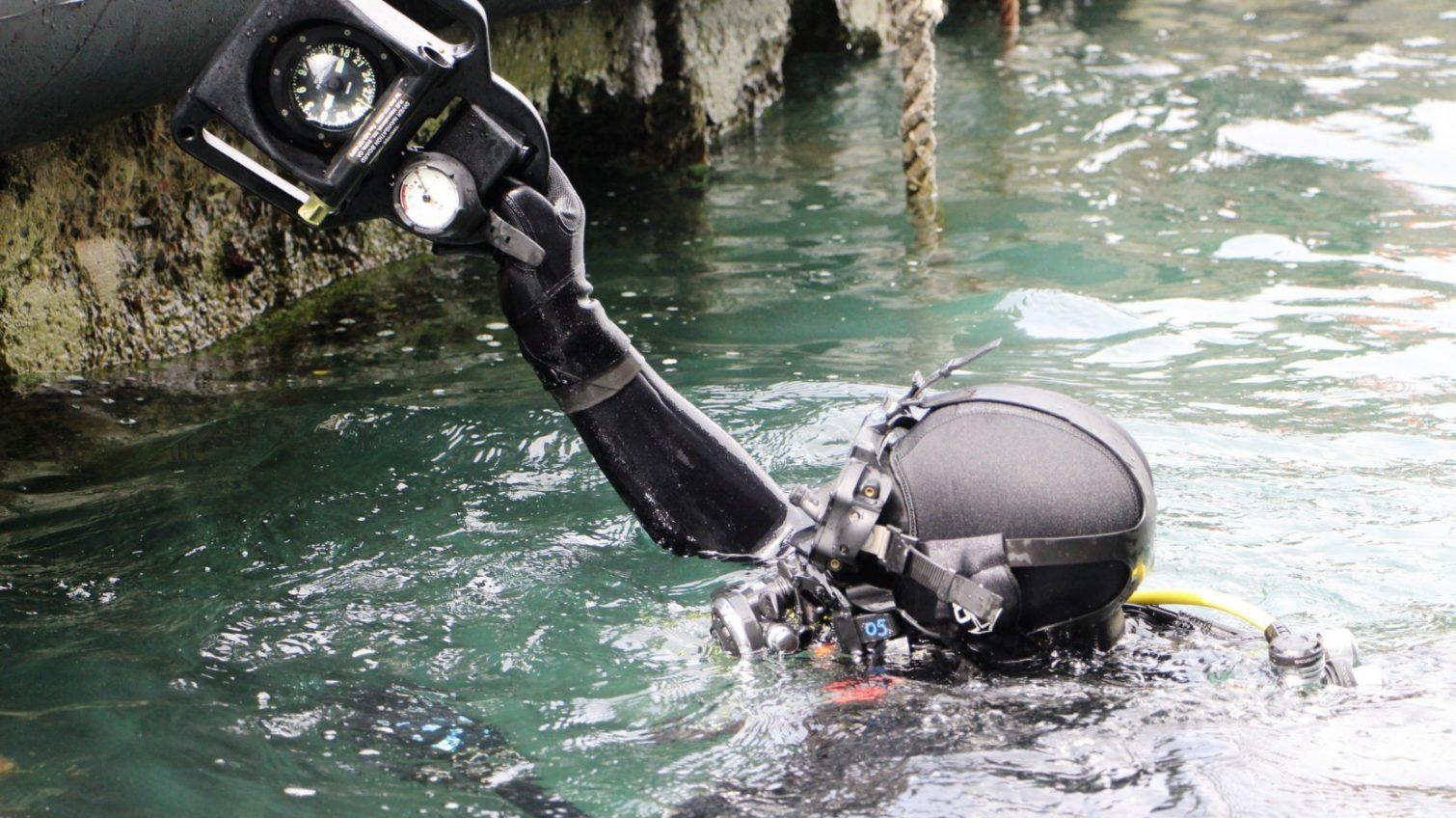 В акватории Одесского порта искали диверсионные устройства противника (фото, видео) «фото»