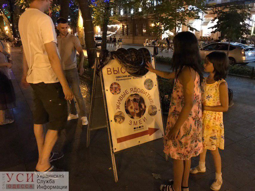 У Труханова решили снова повоевать с «пони», а еще выведут на улицы города «туристическую инспекцию» «фото»