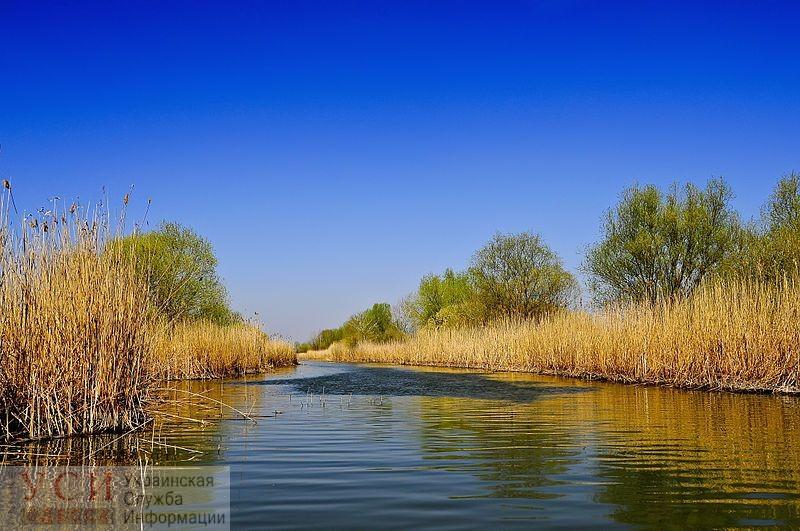 В Одесской области будут судить экс-директора национального парка: он купил жилой дом вместо офиса «фото»