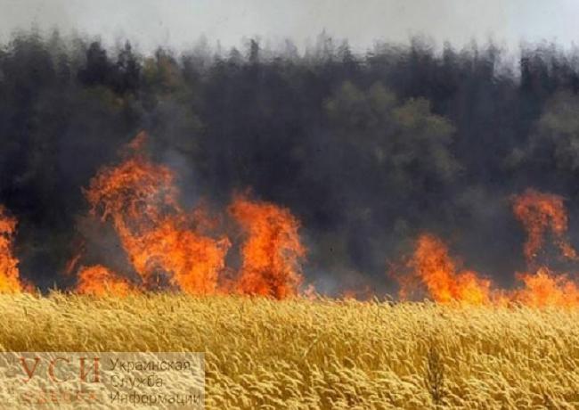 В Одесской области объявлен чрезвычайный уровень пожарной опасности «фото»