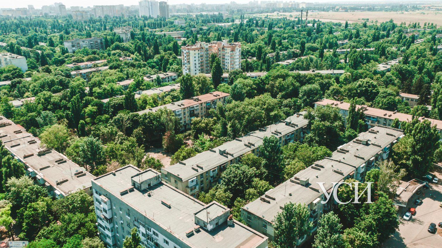 Зеленые «легкие» Одессы: как выглядят Черемушки с высоты в знойный день (аэросъемка) «фото»