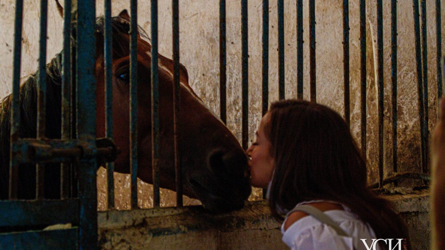Голодные будни Одесского ипподрома: лошади рискуют остаться без еды, а здания в плачевном состоянии (фото, видео) «фото»