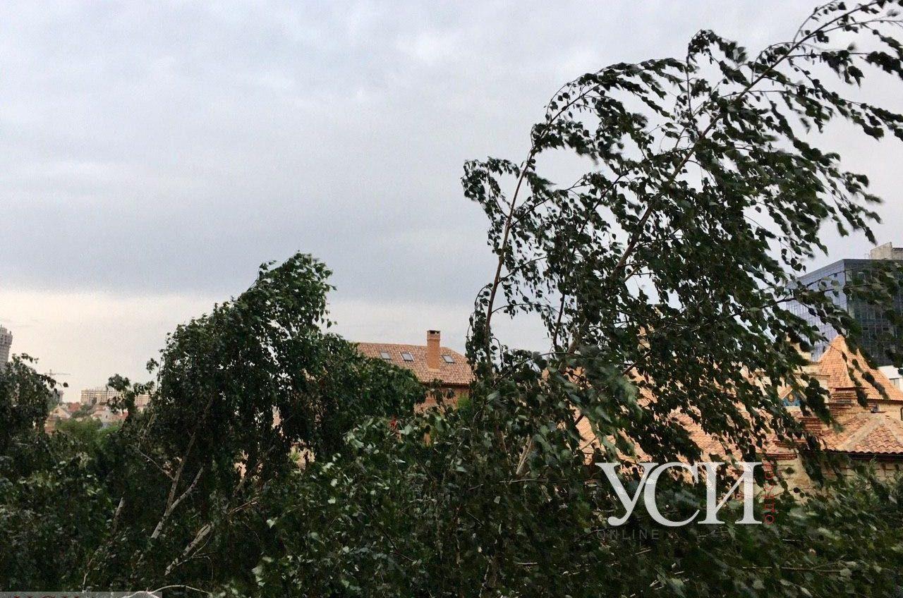 Одессу накрыл грозовой фронт (фото, видео) «фото»