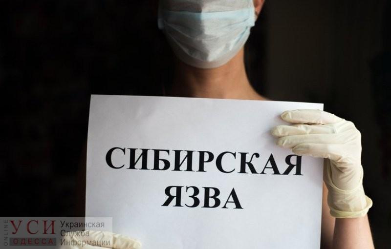 В Одесской области подтвердили случай сибирской язвы: пациент за медпомощью обратился не сразу «фото»