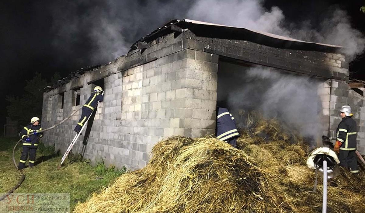 Пожар под Одессой: мужчину госпитализировали «фото»