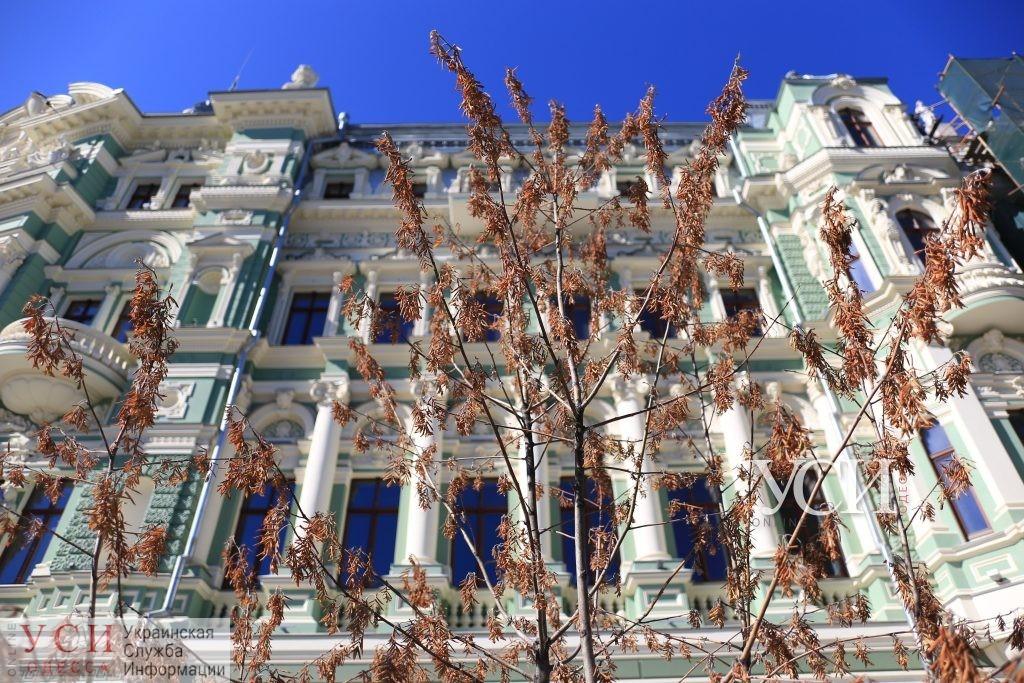 106 миллионов на ремонт: дом Руссова через год после реставрации проверят, а на фасаде уже немало трещин (фото) «фото»