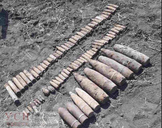 В Одесской области обнаружили боеприпасы времен Второй мировой «фото»