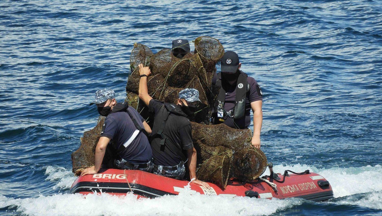 Одесские пограничники спасли от браконьеров краснокнижных морских животных (фото) «фото»
