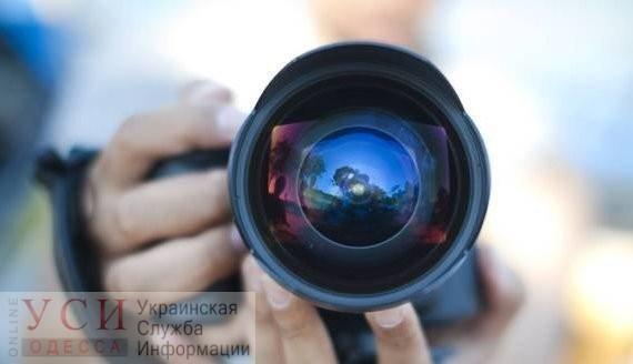 Снимок одесского фотографа попал в шортлист международного конкурса комических фото с животными (фото) «фото»