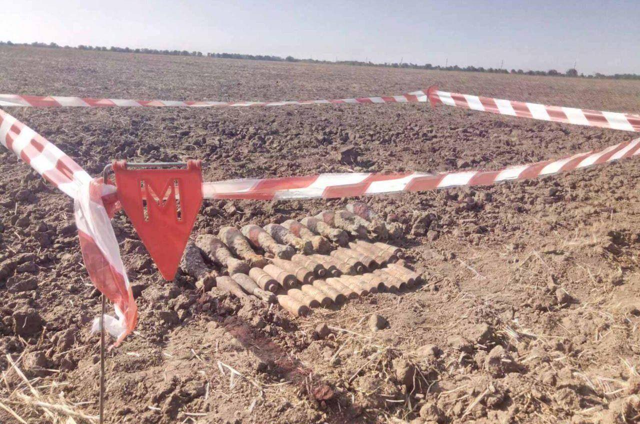 В Березовском районе нашли 35 артснарядов Второй мировой войны (фото) «фото»