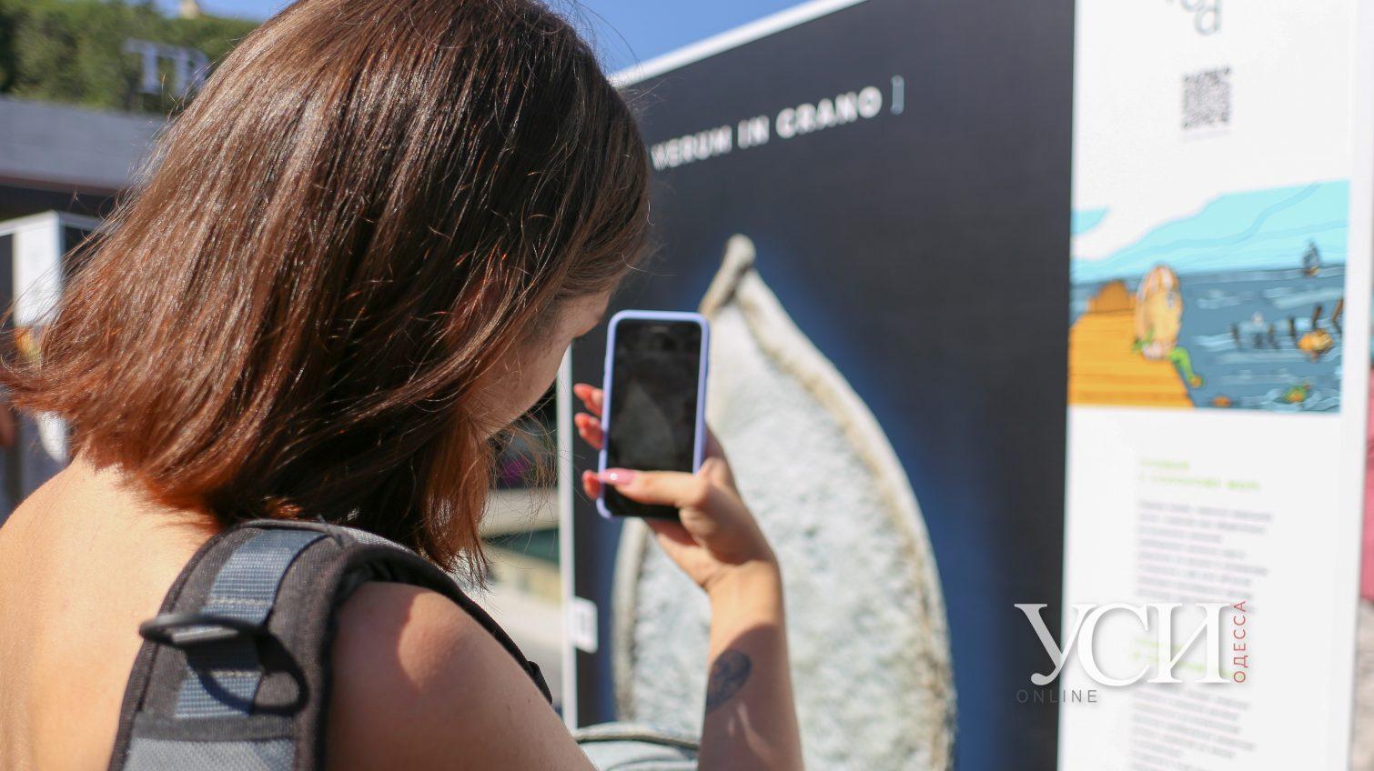 Verum in grano, или Истина в зерне: в Аркадии открылась выставка (фоторепортаж) «фото»