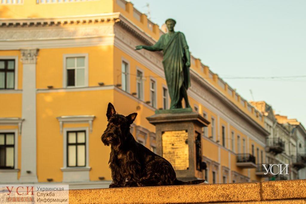 Лето не спешит покидать Одессу «фото»