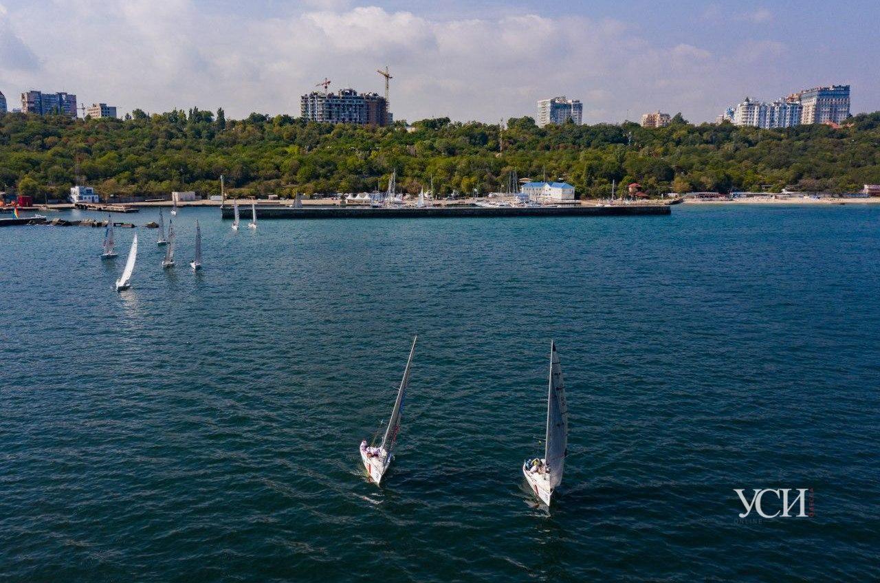 Ловим ветер: в Одессе проходит первый чемпионат Украины по парусному спорту (фоторепортаж) «фото»