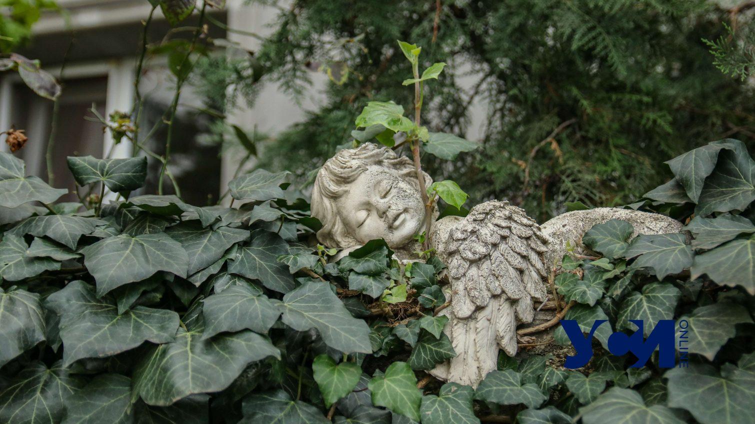 Курсаки: почти сельский район Одессы со своим очарованием (фото) «фото»