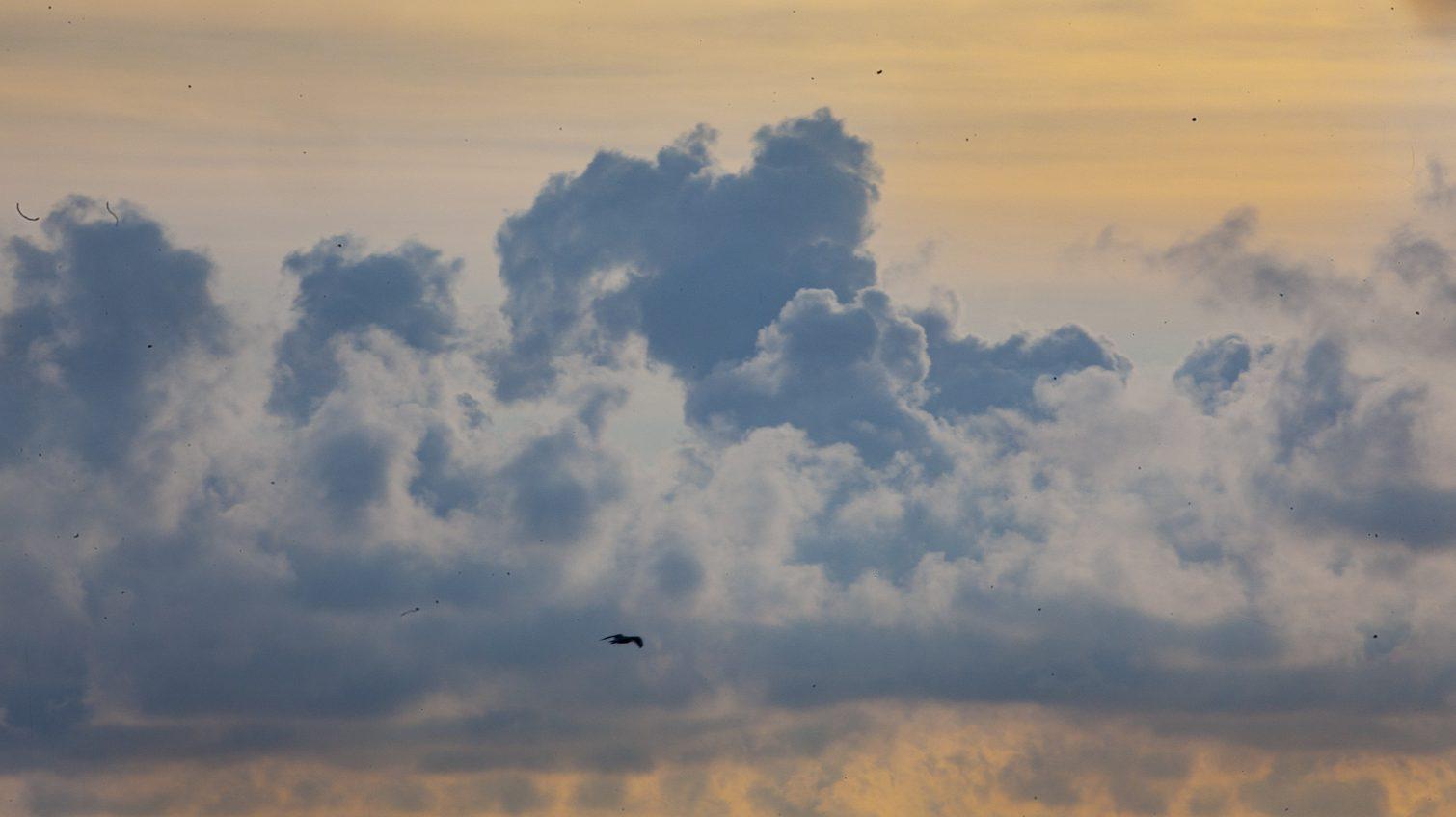 Воскресенье в Одессе будет облачным, но теплым «фото»