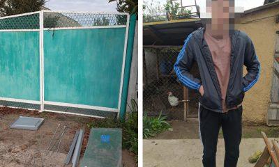 Улитки важнее выборов: парень украл избирательную урну ради разведения моллюсков «фото»
