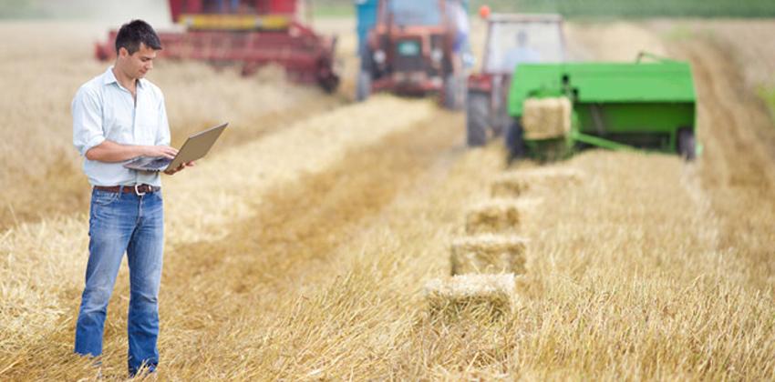 Сорванные контракты аграриев Одесской области могут нанести ущерб в миллиарды «фото»