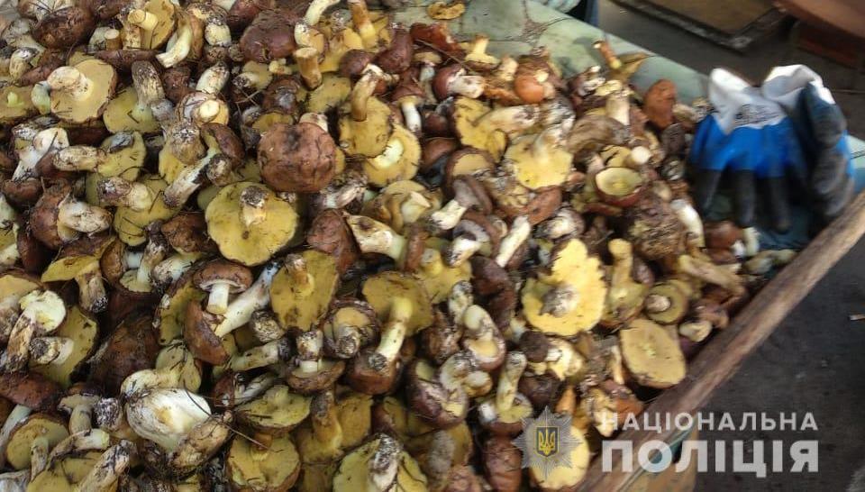 После серии отравлений грибами в Одесской области полиция начала проверки рынков (фото) «фото»